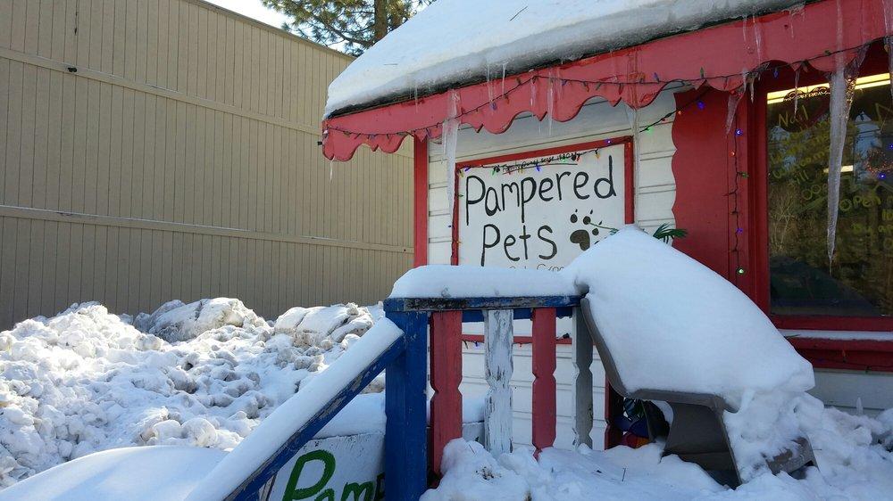 Kim's Pampered Pets: 344 W Big Bear Blvd, Big Bear City, CA