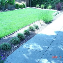 Landscaping Bay Area   47 Photos U0026 12 Reviews   Gardeners   Redwood City,  CA   Phone Number   Yelp