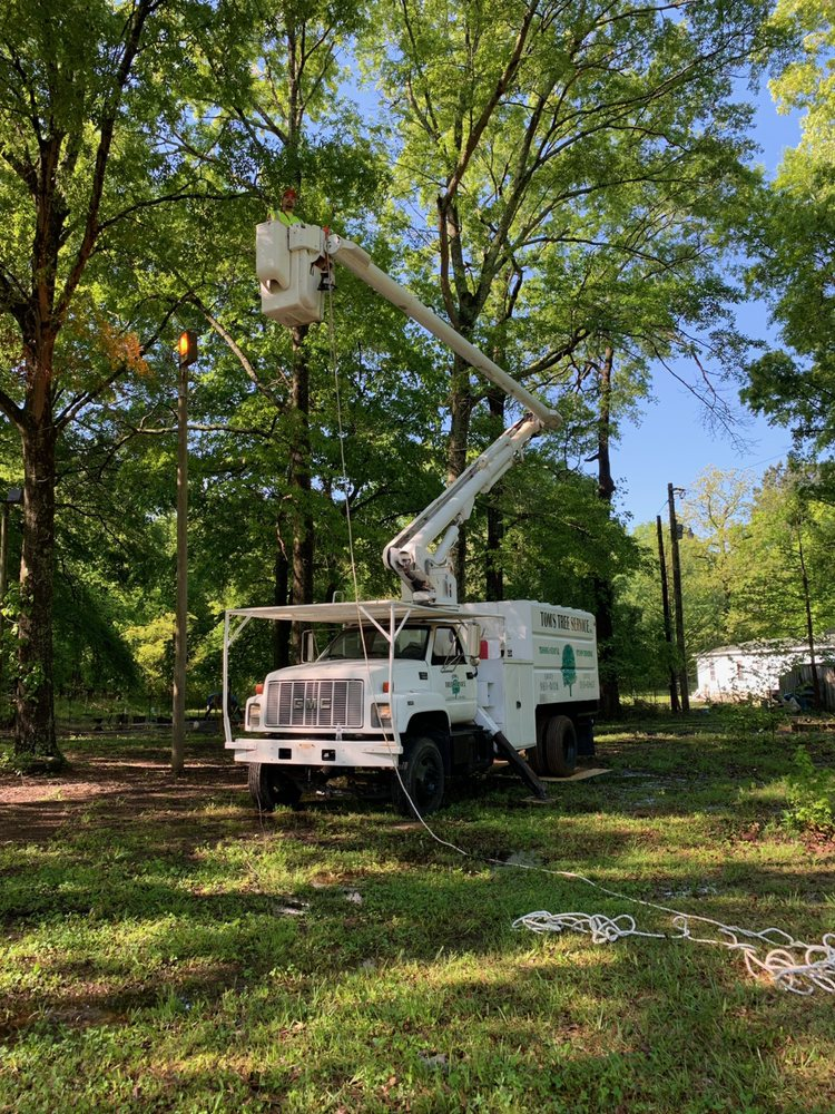 Deep Root Tree Service: 1003 S Richardson Place Dr, Bryant, AR