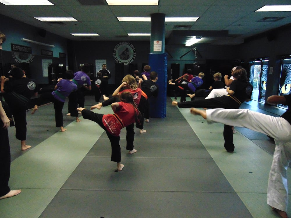 Alpha Martial Arts: 1912 E Madison St, Seattle, WA