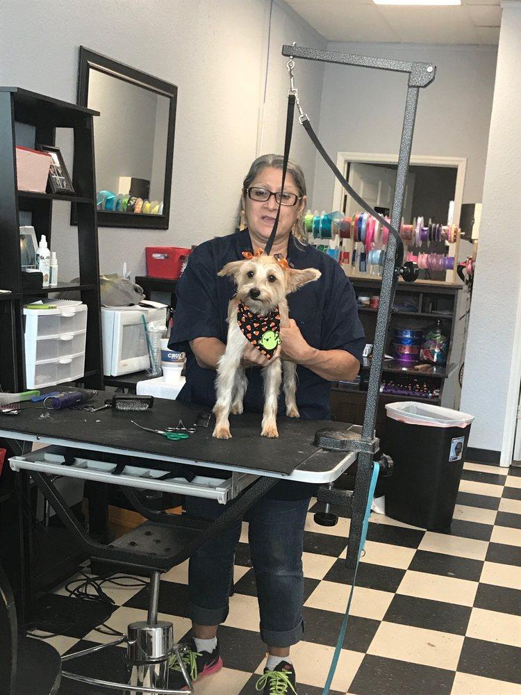 Puppy Love Pet Grooming