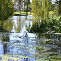 Jardin botanico de cordoba 39 fotos jardines bot nicos for Jardin botanico numero telefonico
