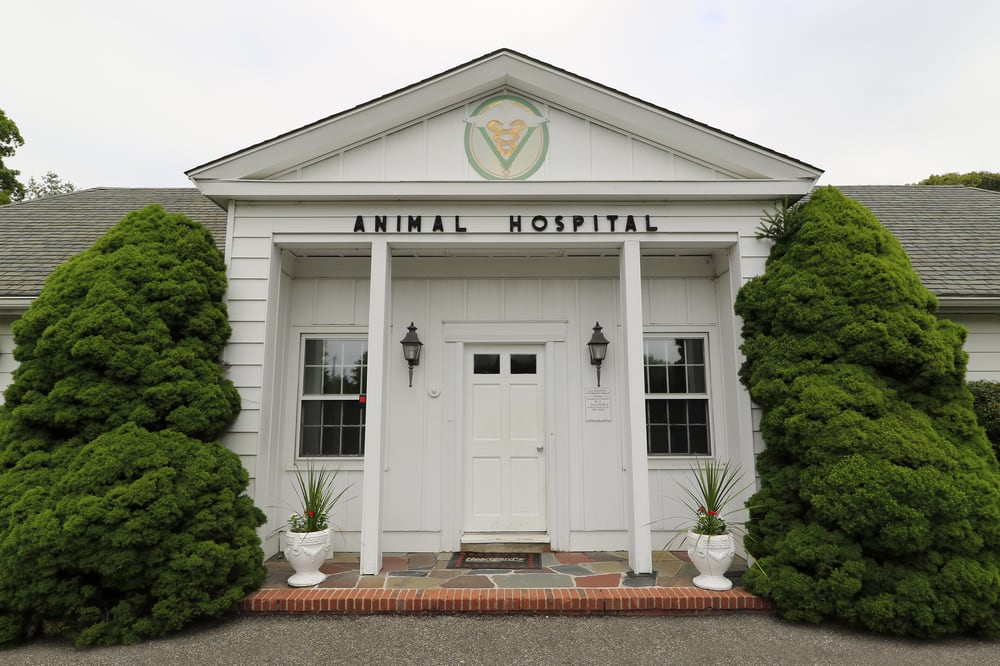 East Hampton Veterinary Group