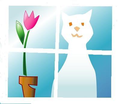 Uptown Cats: 1076 Towne Rd, Sequim, WA