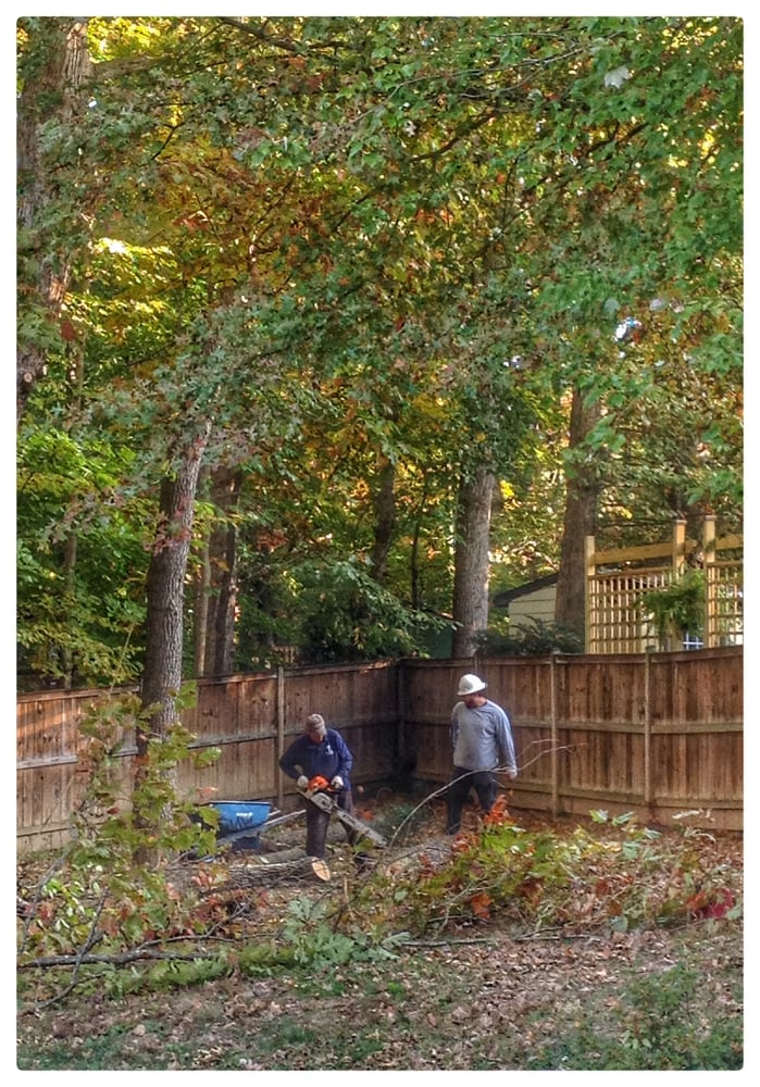 ADM Tree Services & Landscaping LLC: 43743 Beaver Meadow Rd, Sterling, VA