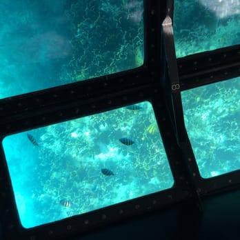 Glass bottom boats fl
