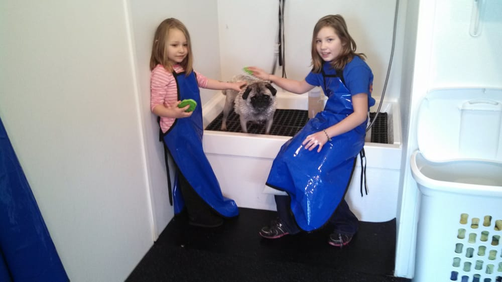 Dirty Dawgs Self Serve Pet Wash & Groom: 12770 Newell Ae, Lindstrom, MN