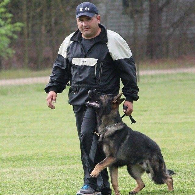 Dog Obedience Training Boarding West Palm Beach