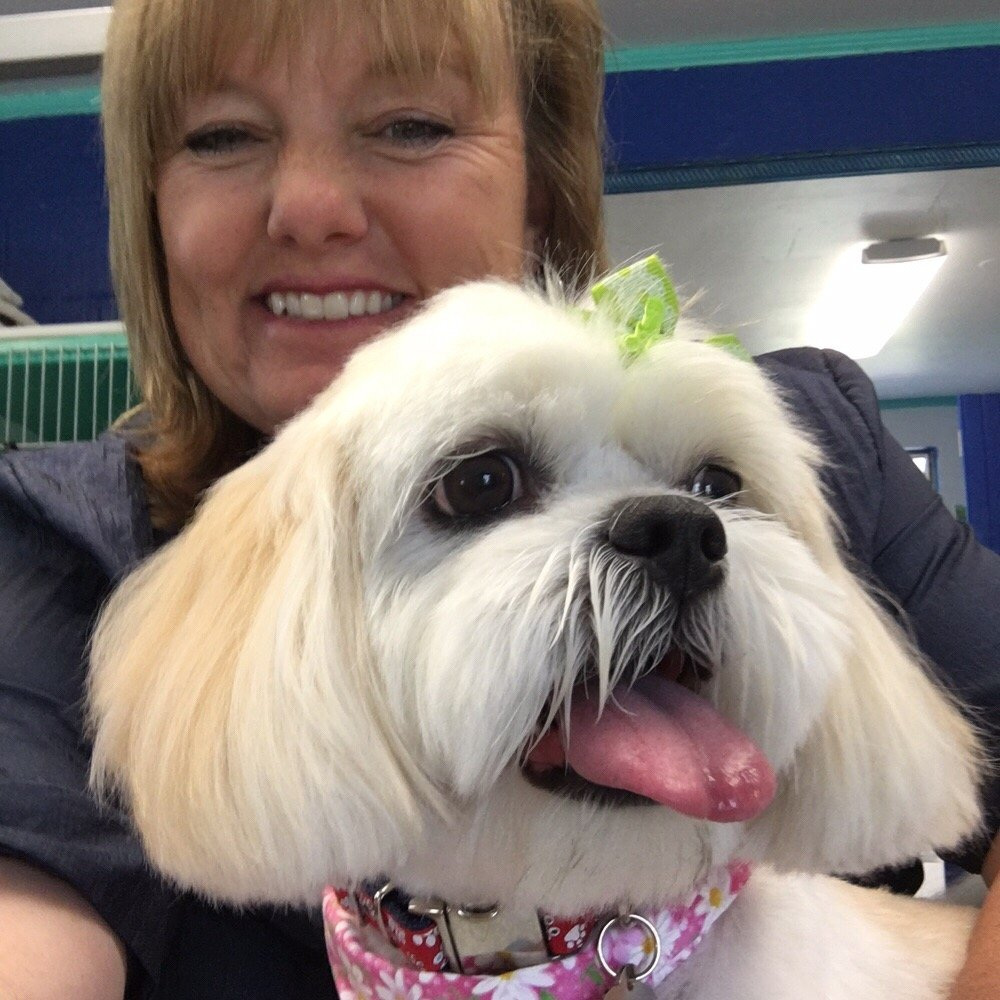 Dog Groomers That Specialize In Small Dogs