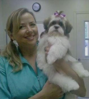 Nature S Pet Day Spa Grooming Gainesville Fl