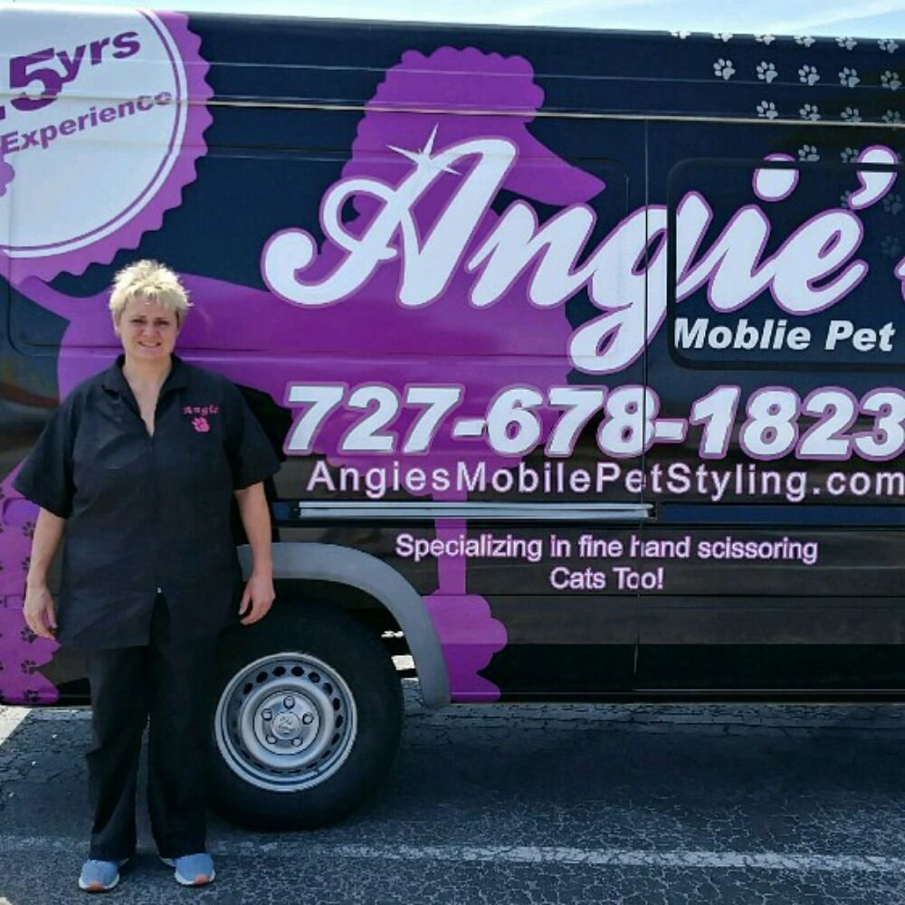 Mobile Dog Grooming Palm Harbor Fl