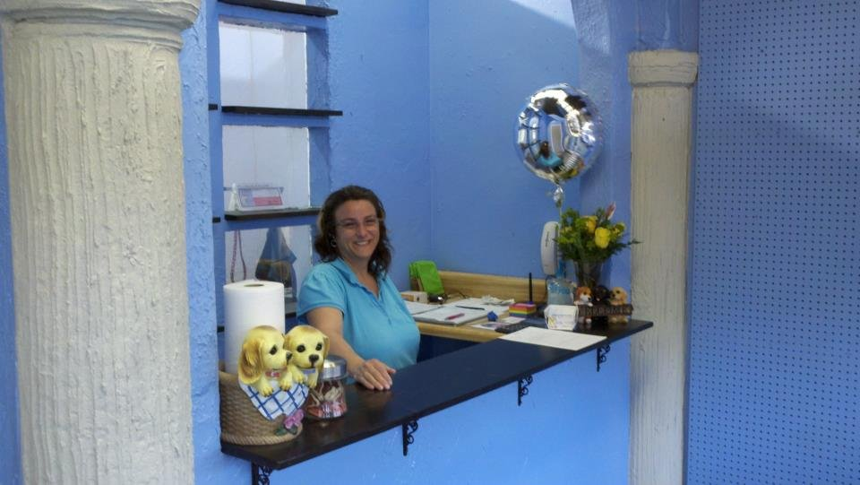 Dog Grooming Grapevine Tx