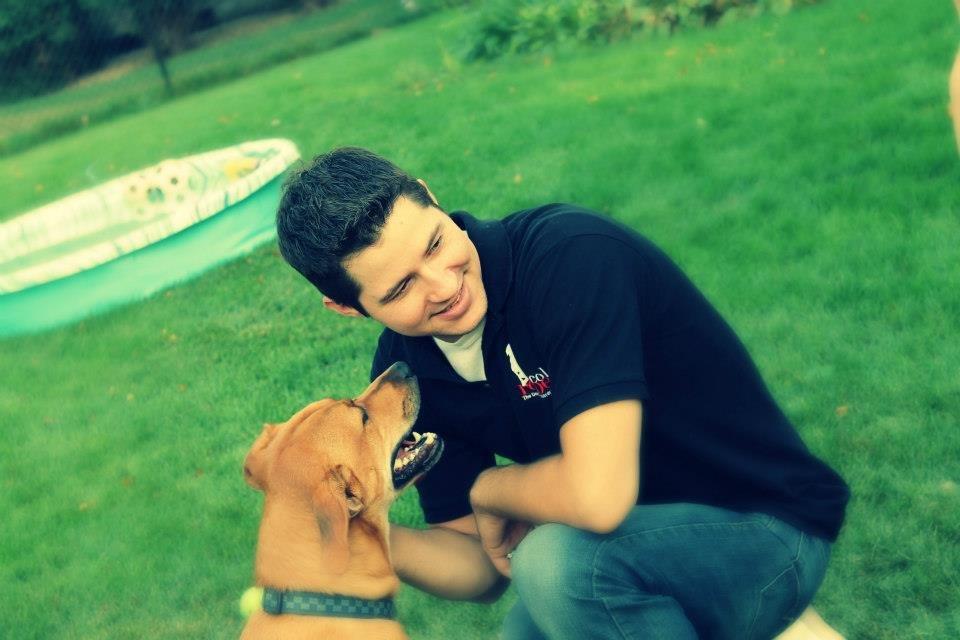 Burnsville Dog Training