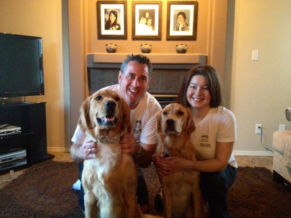 Dog Training Roehampton