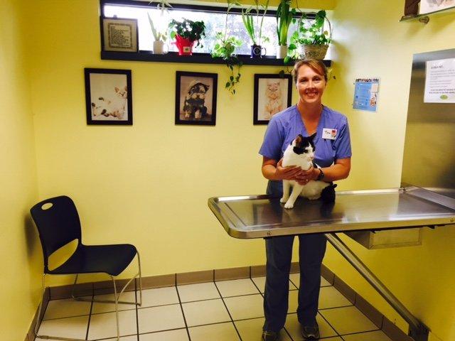 Oak Park Animal Hospital 17 Photos 36 Reviews Veterinarians 242 Madison St Oak Park Il