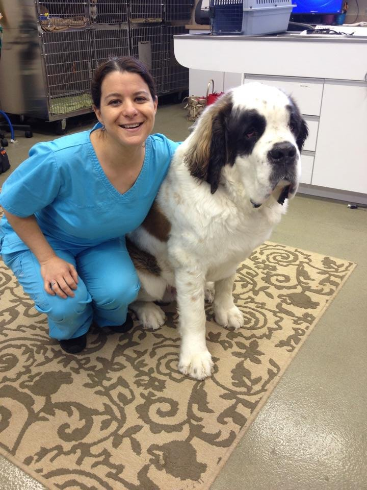 Natural Pet Animal Hospital Reviews