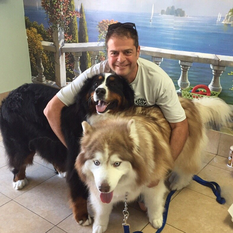 South Bay Dog Grooming Rolling Hills Estates Ca