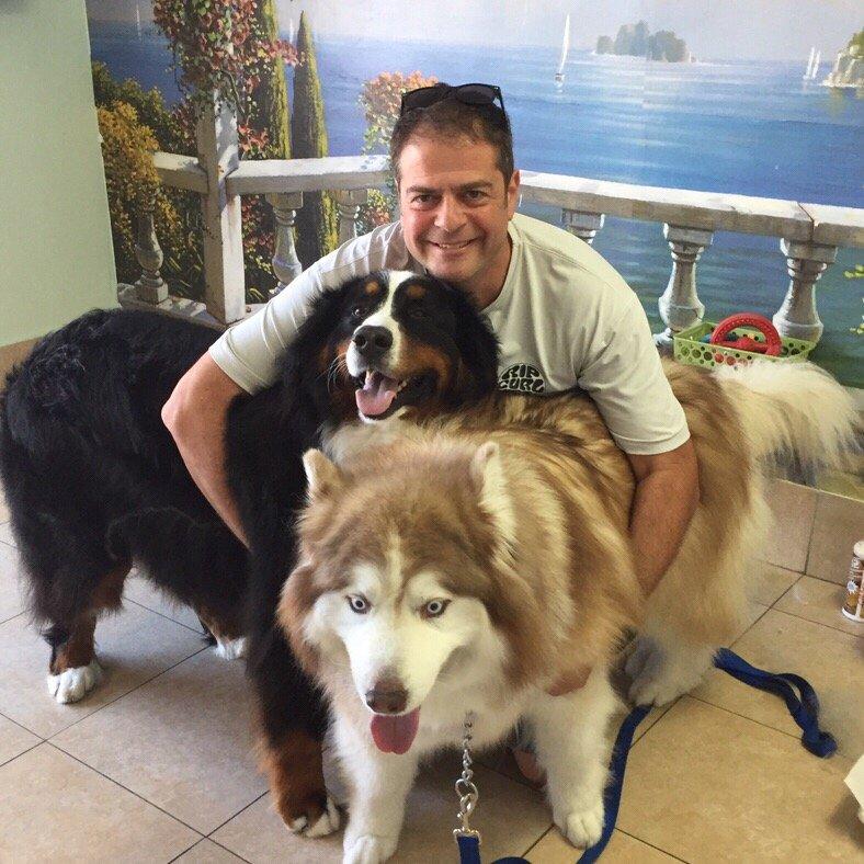 Three Hills Dog Grooming
