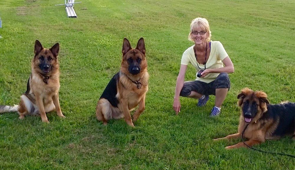 Hutto Dog Training