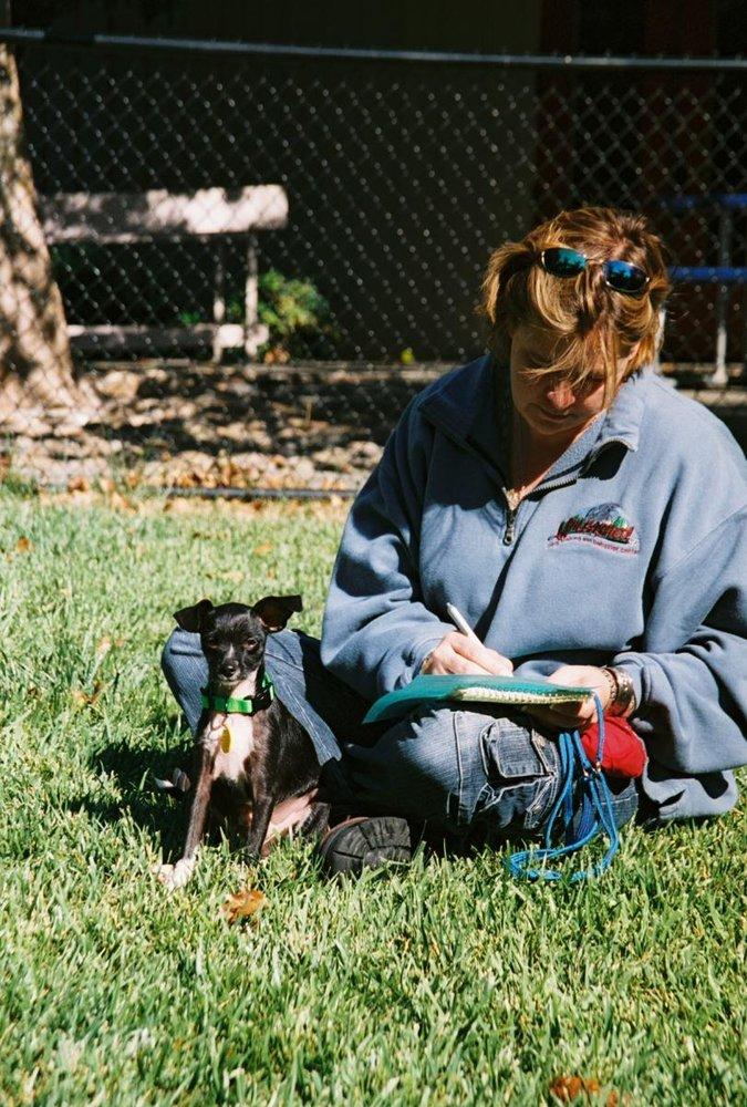 Unleashed Dog Training Petaluma Reviews