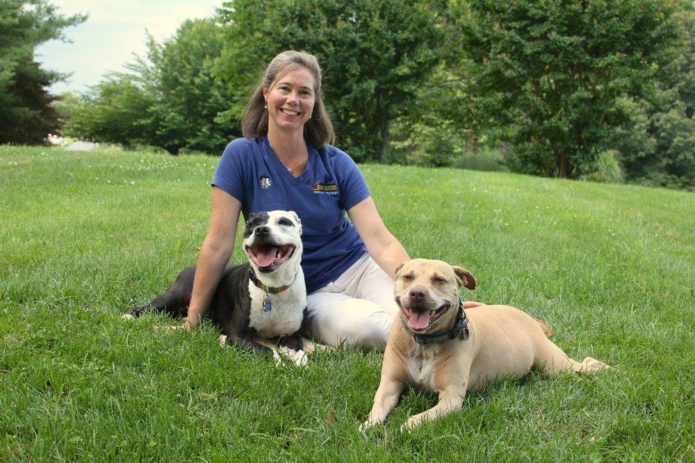 Dog Friendly Charlottesville Va