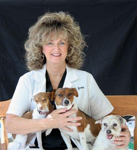Dog And Cat Clinic Shreveport