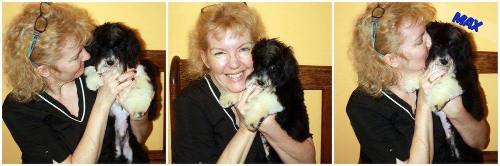 Academy Of Dog Grooming Arts Illinois