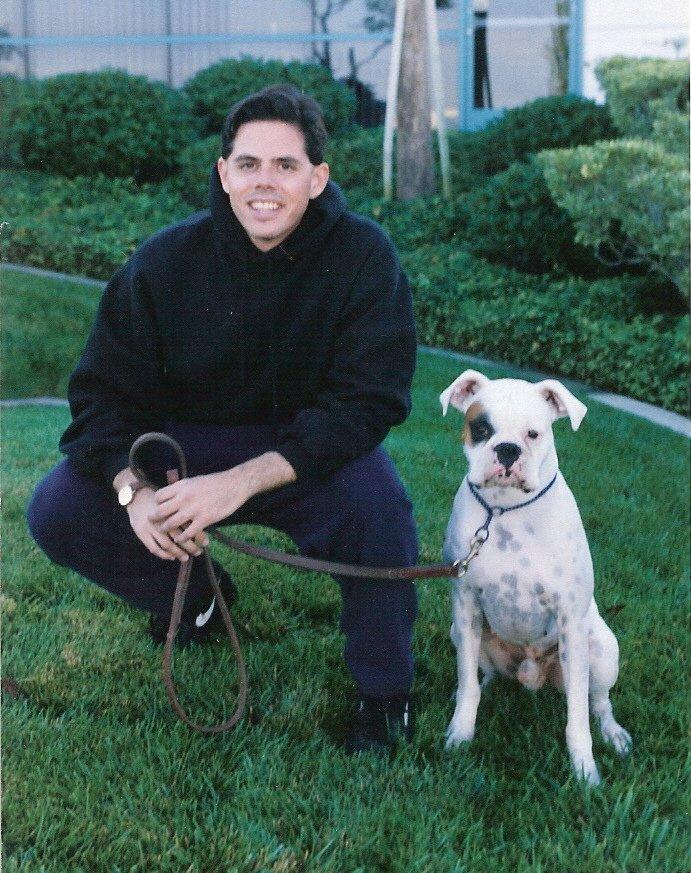 Canine Behavior Amp Training Solutions Closed Pet