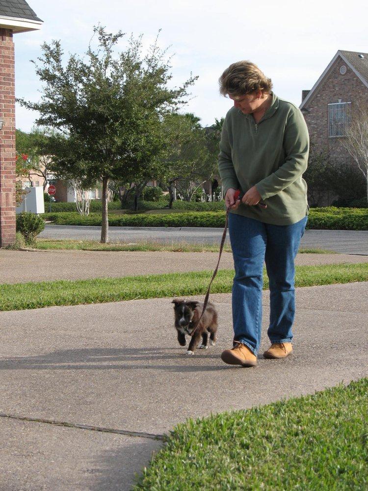 Service Dog Training Austin Tx