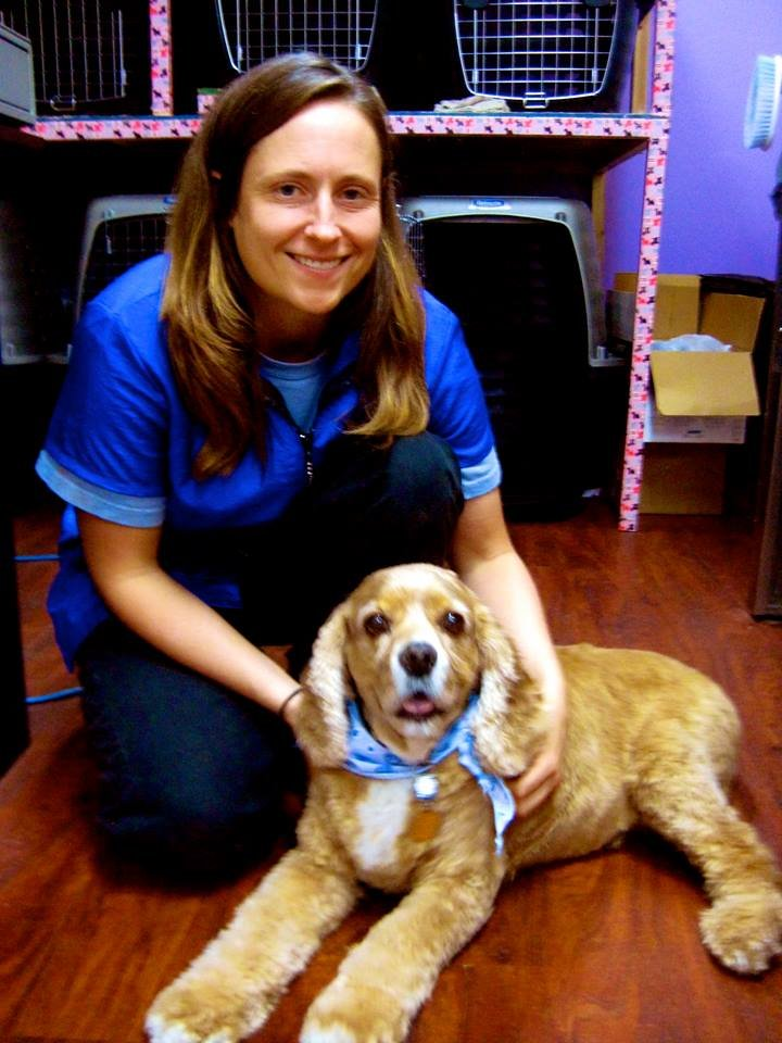 Dog Grooming In Lindsay Ca