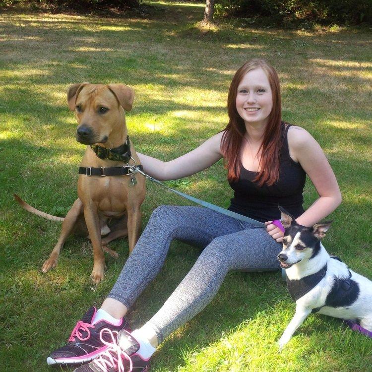 Volunteer Dog Walking Surrey