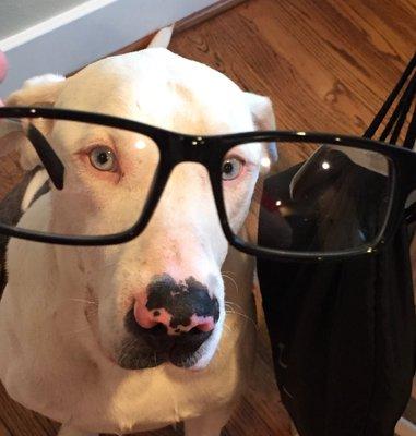 Mr. Peabody ..