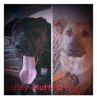 Bailey M.