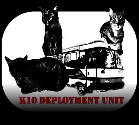 K10 Deployment Unit T.