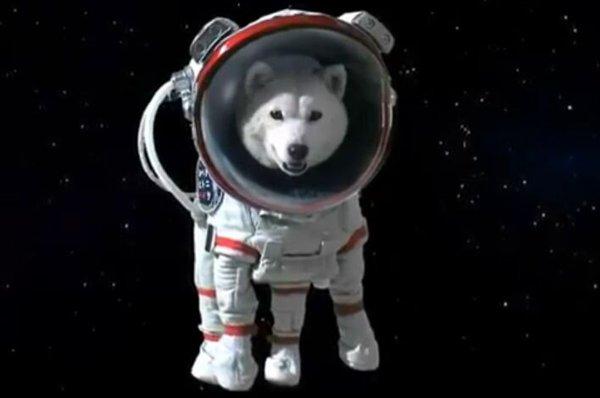 Space D.