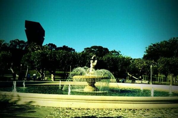 Venice S.