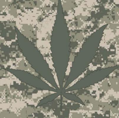 Veteran F.